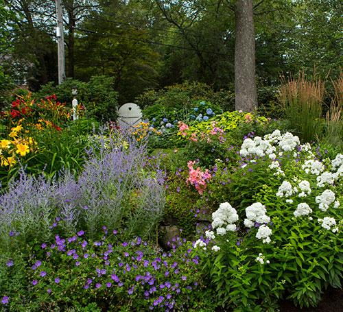 Fine Gardeners - Perennial Gardents, Brookline, Needham, Newton, MA